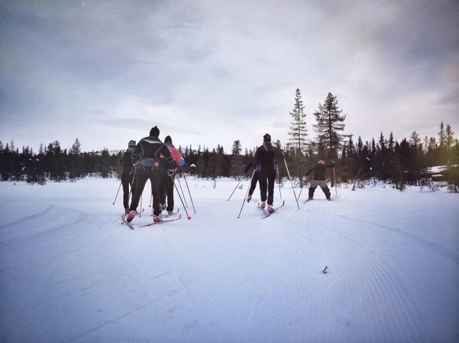 xc ski norway