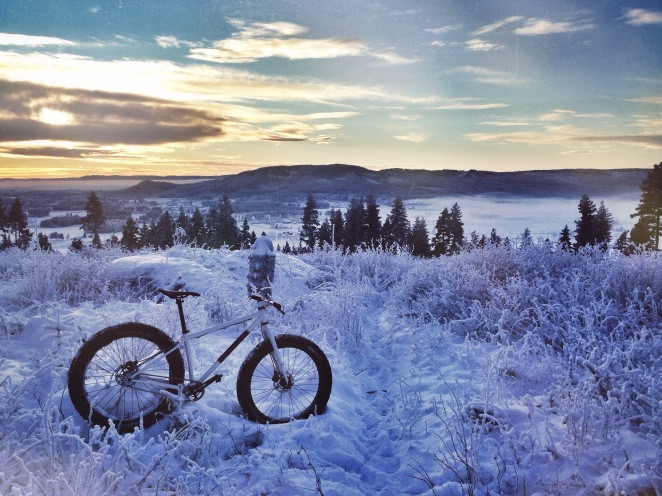 singular puffin fat bike norway